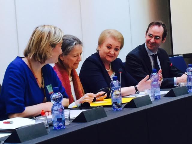 Image - Intervention devant les députés européens pour dénoncer la GPA