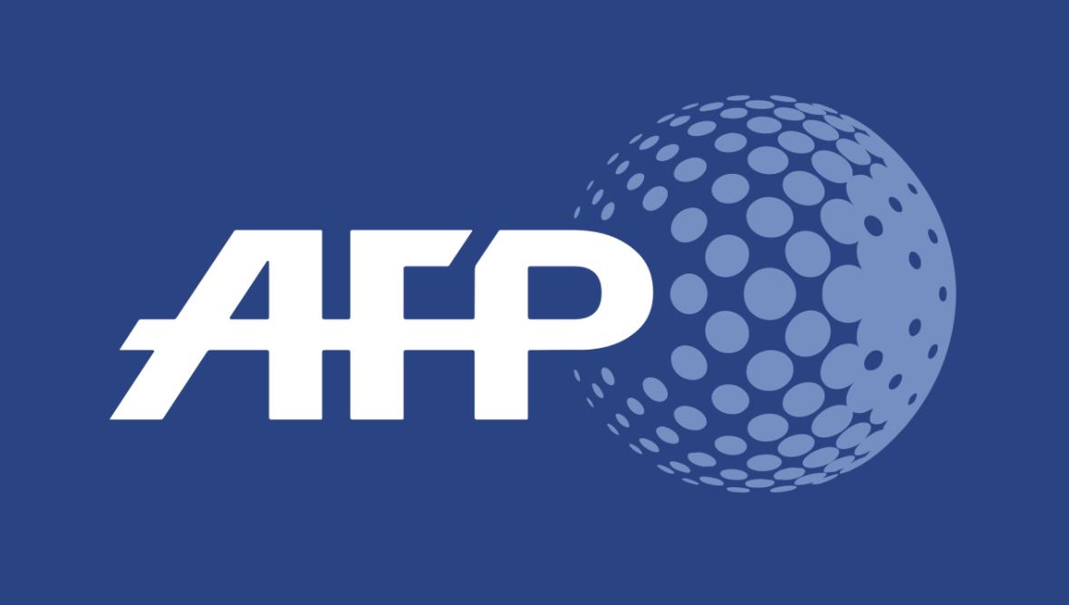 """Image - Dépêche AFP : GPA: la Manif pour Tous appelle Macron à """"agir"""" contre une pratique """"en plein essor"""""""
