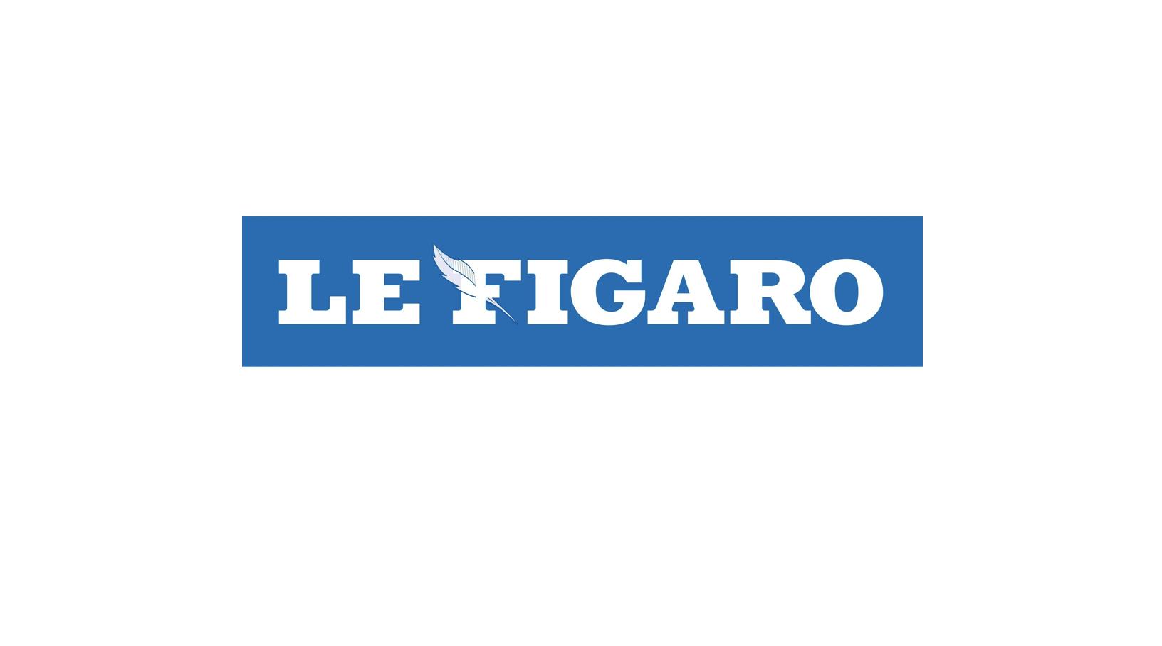 """Image - Le Figaro : """"Bioéthique : les anti-PMA très mobilisés"""""""