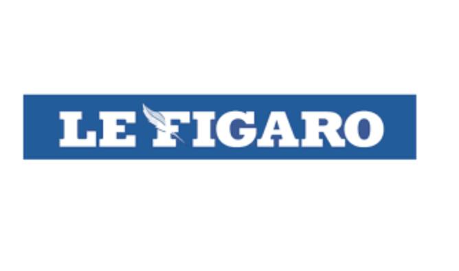 """Image - Le Figaro : """"Le Conseil d'État ouvre la porte à la PMA pour toutes"""""""