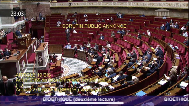 Image - Bioéthique : gouvernement et majorité aux abonnés absents  pour « le texte de la honte »